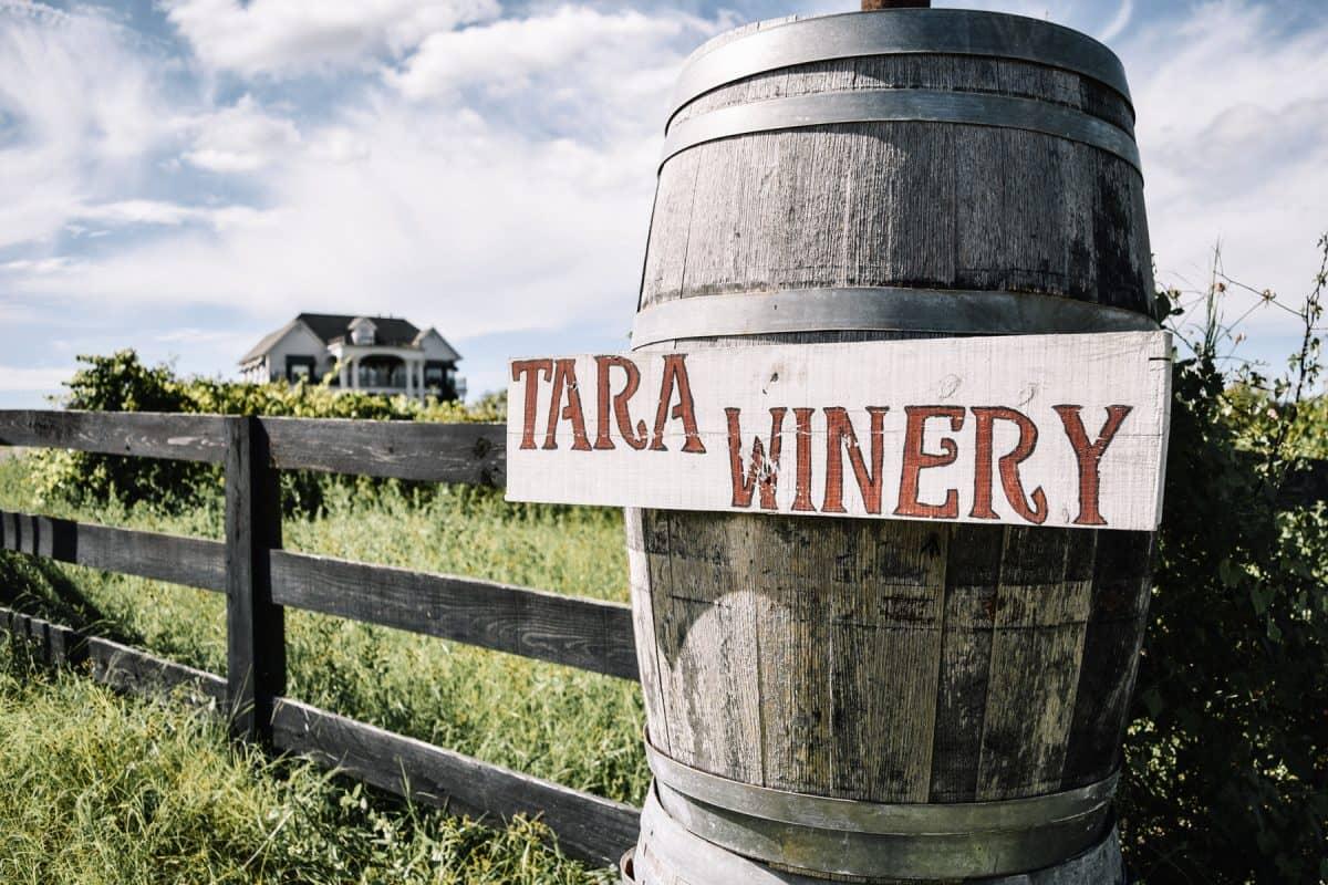 tara-winery-1