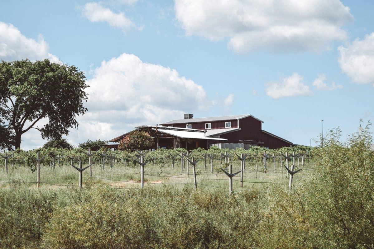 tara-winery-3